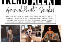 TREND ALERT - Snake Print